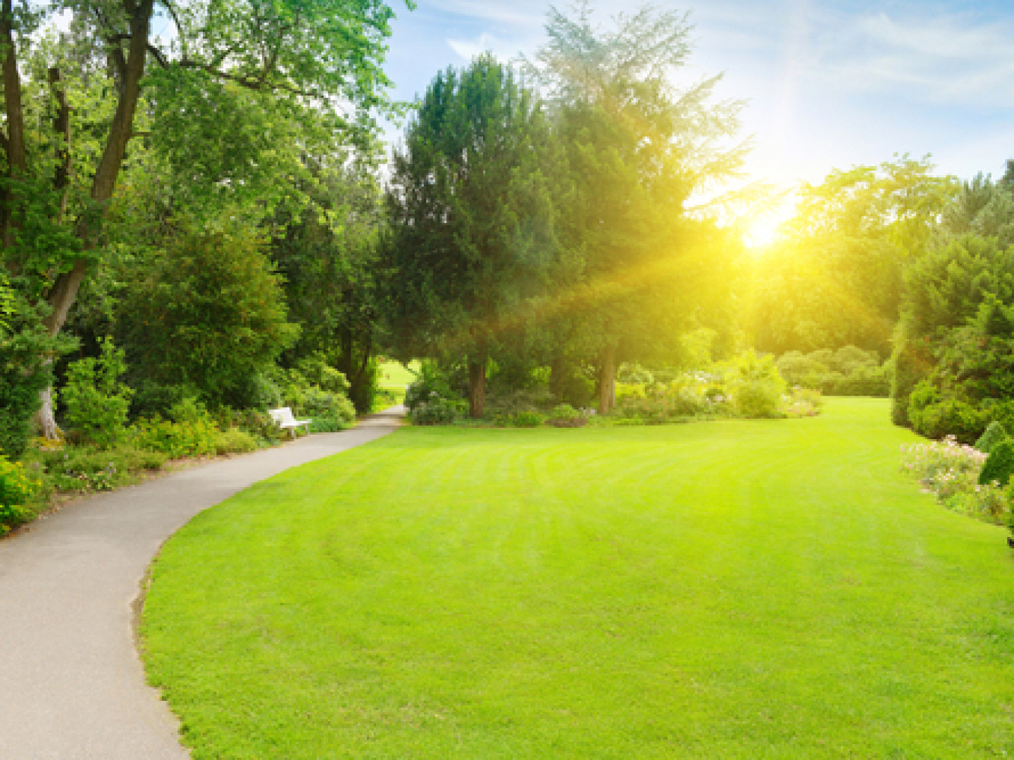 Check out the benefits of lawn aeration