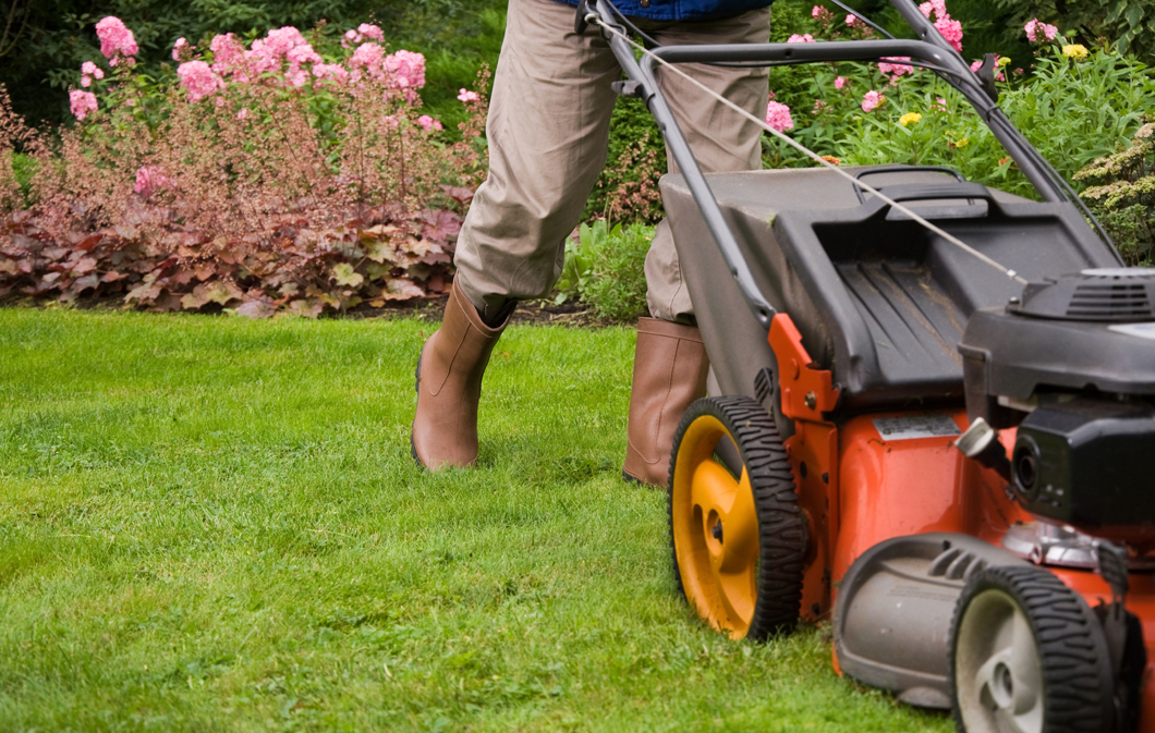 What weekly lawn care service includes